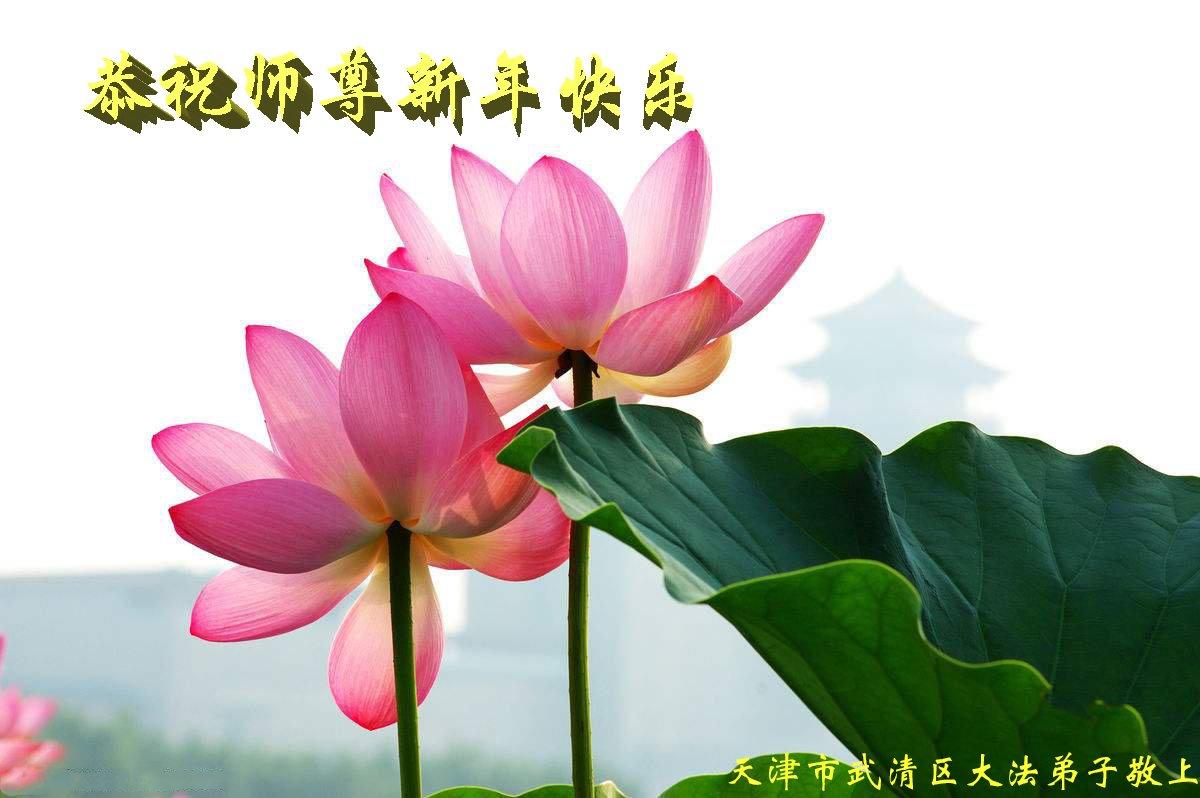 Falun-Dafa-Praktizierende in der Stadt Tianjin wünschen dem ...