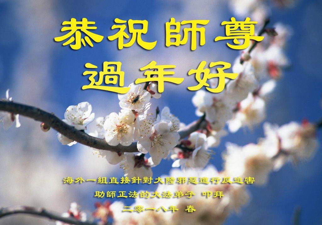 Falun-Dafa-Praktizierende außerhalb Chinas wünschen dem verehrten ...