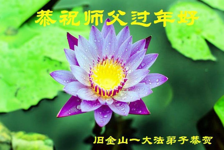 Falun-Dafa-Praktizierende im Westen der Vereinigten ...