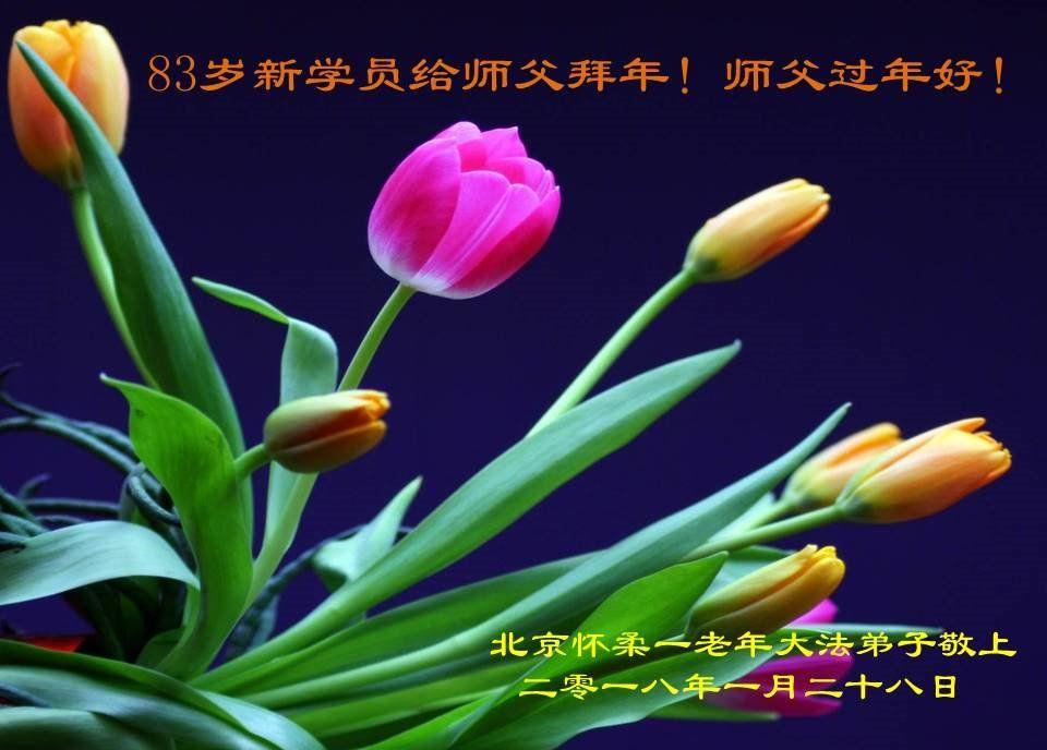 Falun Dafa - Minghui.org
